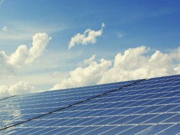 renewable energy companies in Petaluma